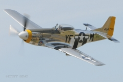 tf_legends_p-51_8128